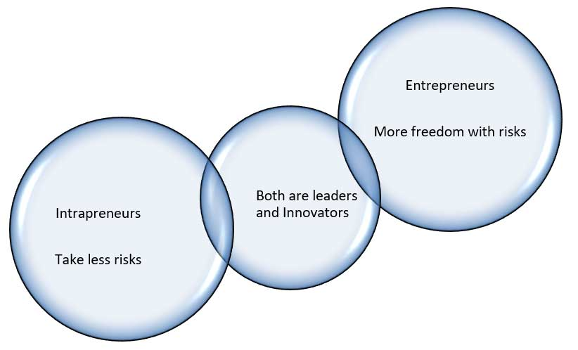 Difference between Intrapreneur and Entrepreneur