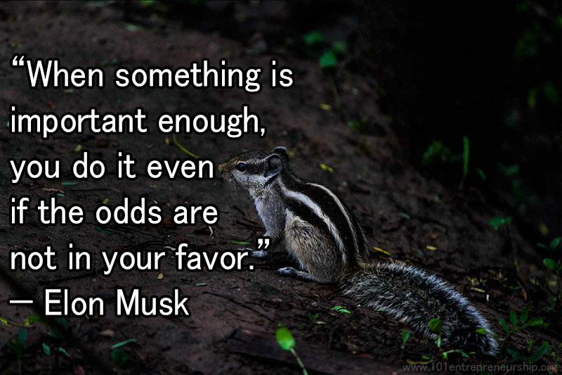 Elon Musk entrepreneur quotes